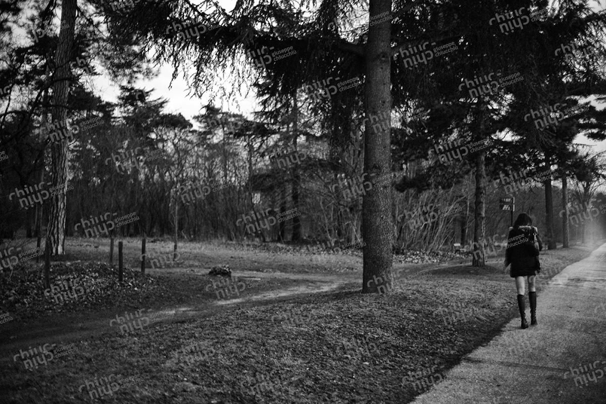 France - Bois de Bologne Paris