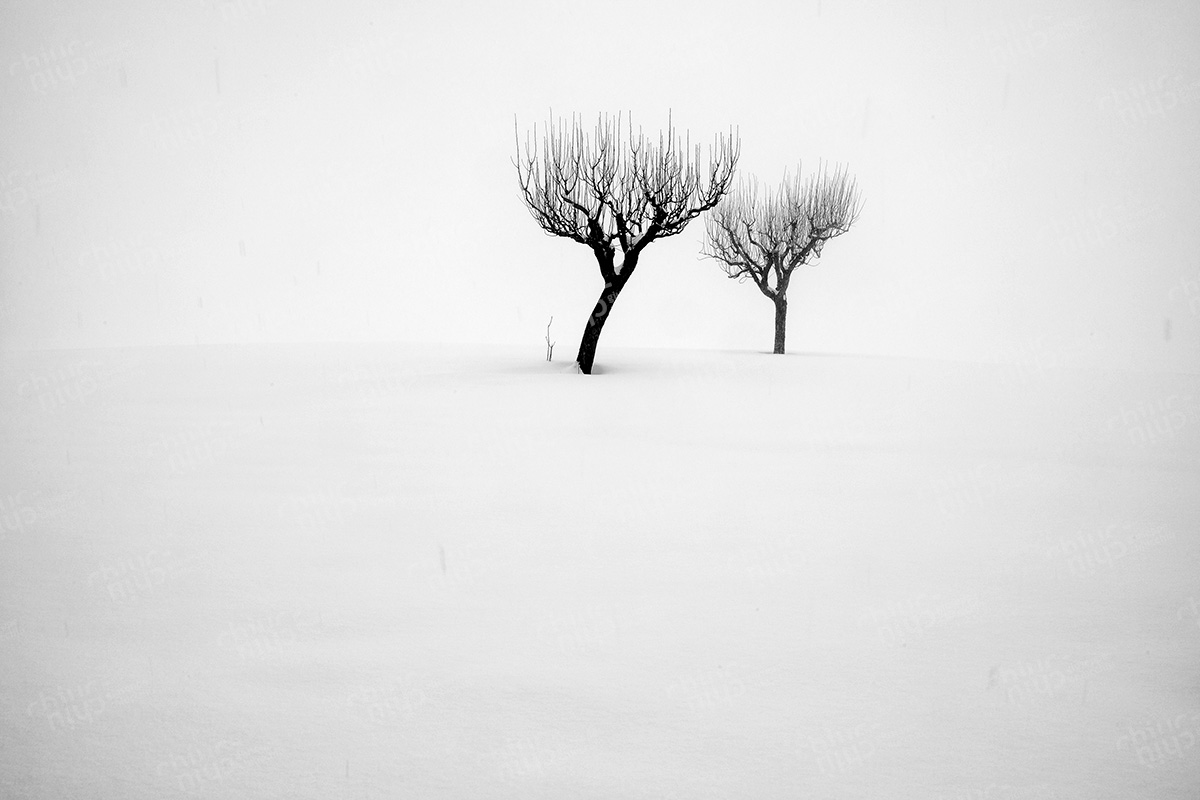 Italy - Winter in the Marche