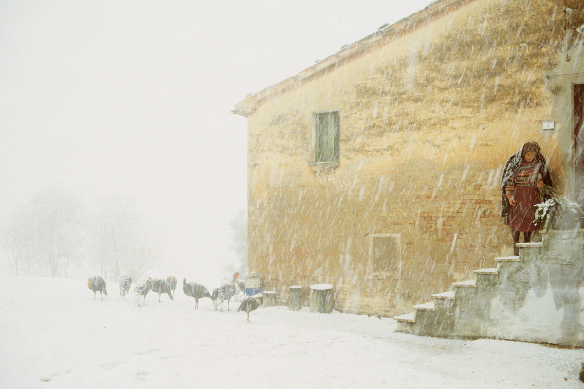 Italy - Farmer country house courtyard