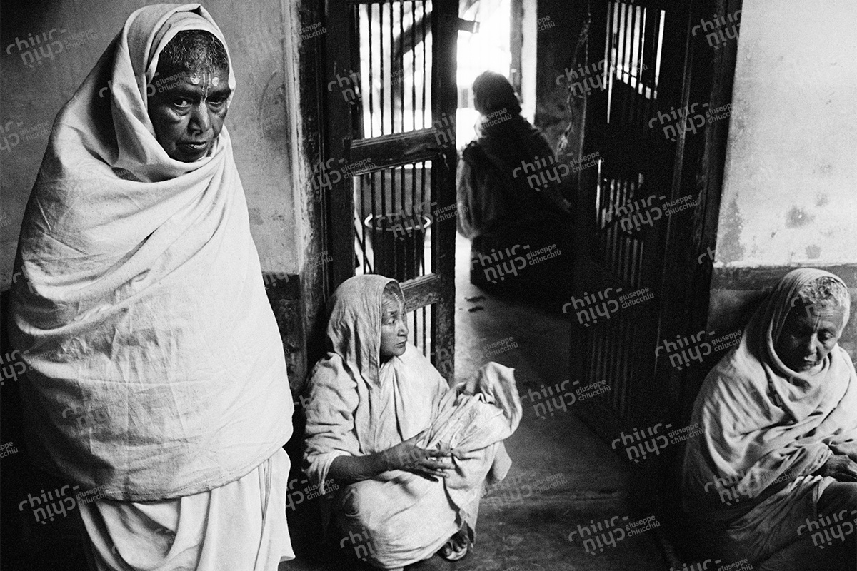 India - Widows of Vrindavan