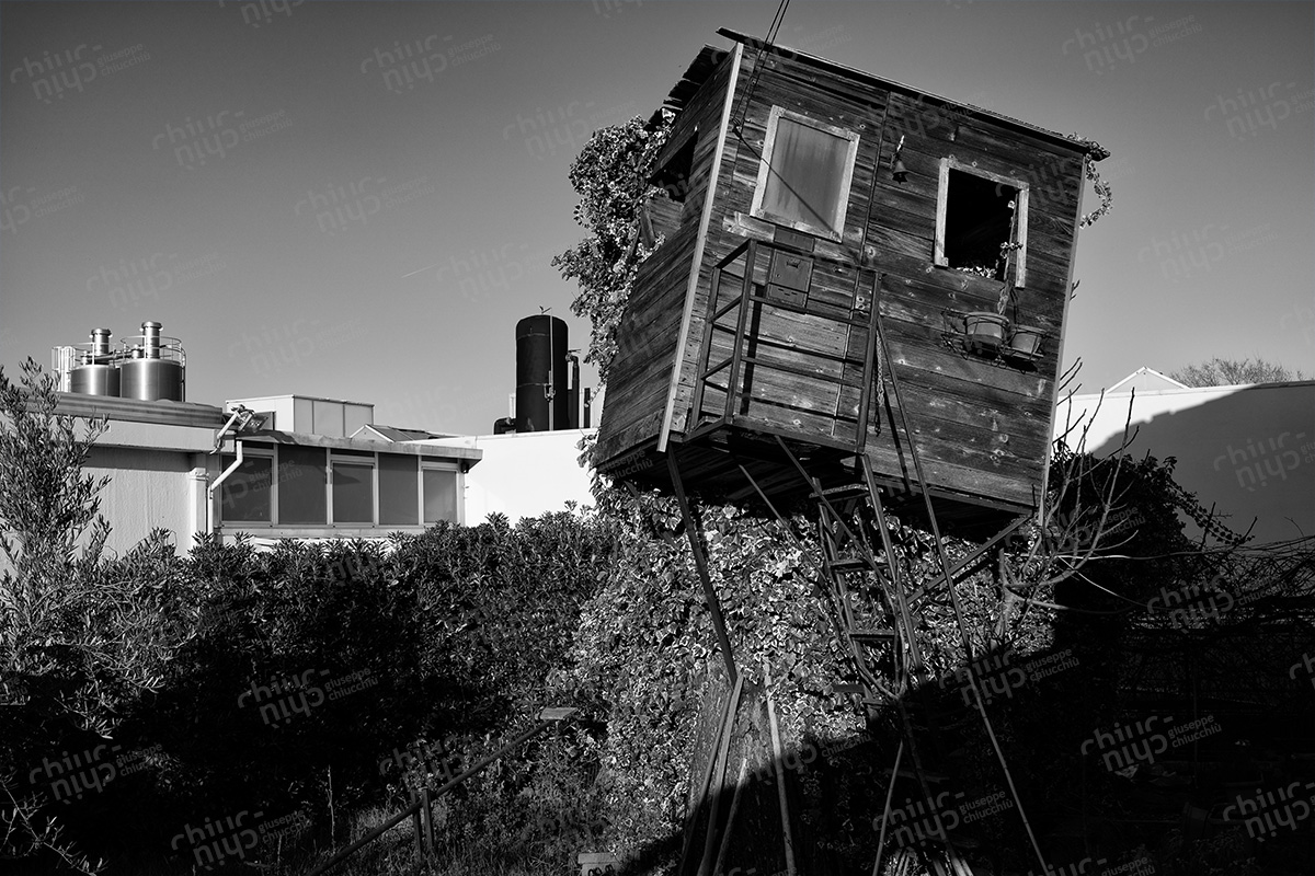 Italy - Tree house destroyed by the wind